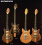 guitares:scorpionkasuga.png